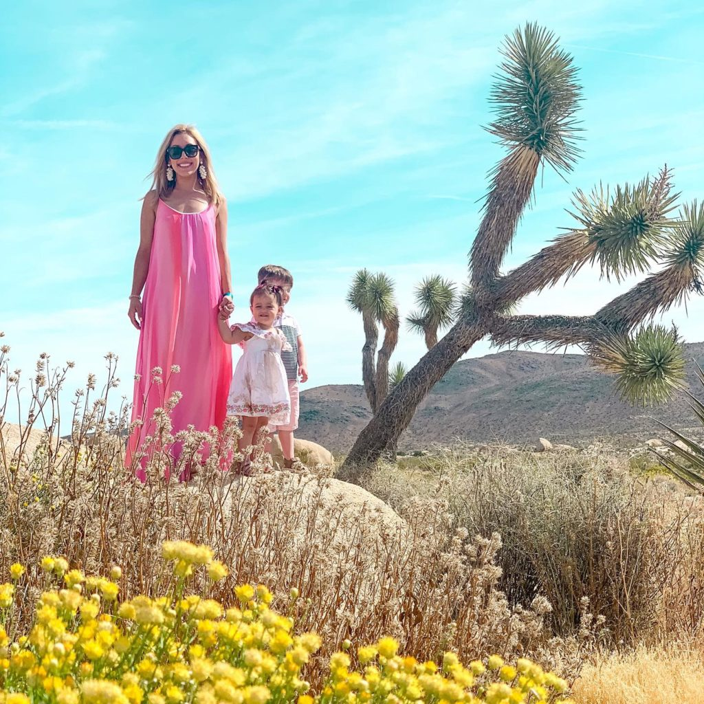 YouTube Moms Brianna K wearing hot pink maxi dress with daughter Presley and son Landon in Joshua Tree National Park on vacation in Palm Springs | 10 SUMMER MUST HAVES 2019 BITS OF BRI BLOG BY BRIANNA K