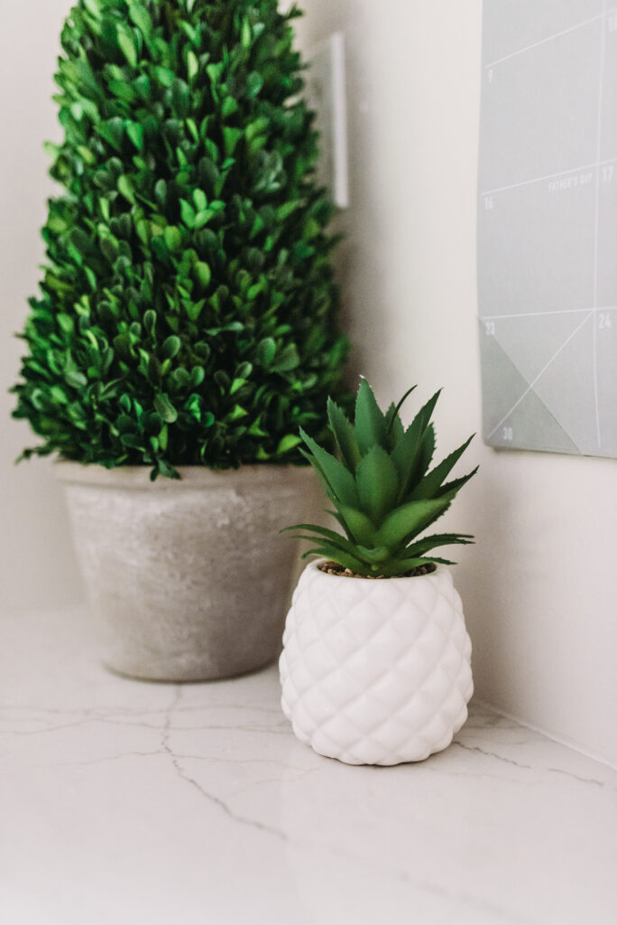 green pineapple cactus and green boxwood tree. all white kitchen decorated simply for summer with pops of yellow lemons and yellow gingham towels and sunflowers with greenery. three tiered stand decorated for summer with lemons and lemon striped straws and greenery.  White tile vintage lantern backsplash and Ella Cambria quartz countertops with white cabinets and windfresh white walls. Bitsofbri Brianna K summer decor home tour 2019 blog post summer decor inspiration