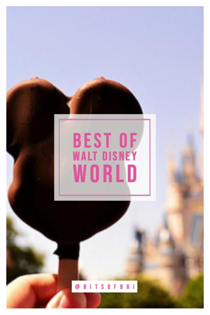 Best snacks you have to try at Walt Disney World | Disney Blog series by Brianna K bits of bri blog