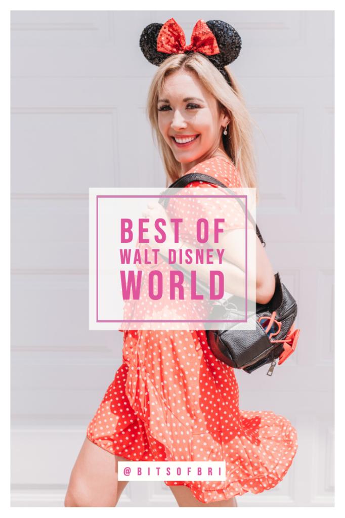 BEST DISNEY OUTFITS FOR EACH PARK AT WALT DISNEY WORLD Bits of Bri Blog by Brianna K
