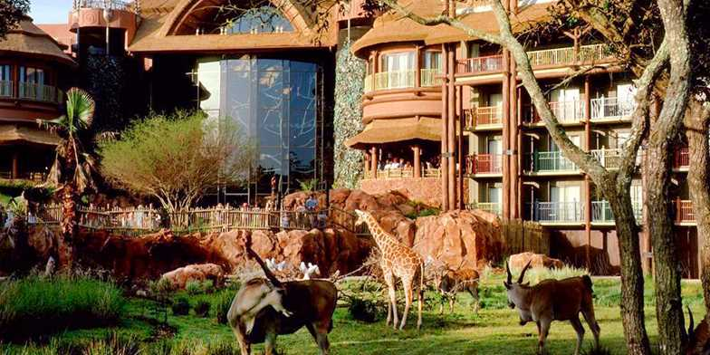 Disney's Animal Kingdom Lodge Savanna Where to stay at Disney World blog post by Brianna K bitsofbri blog